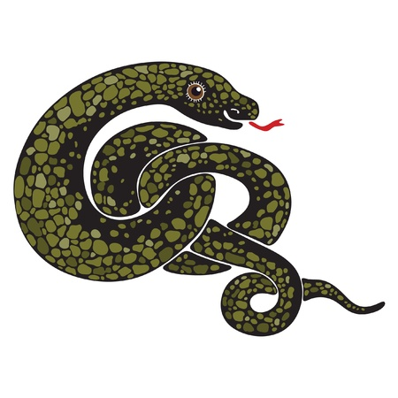 Isolated image of a large snake curled Stock Vector - 16003364