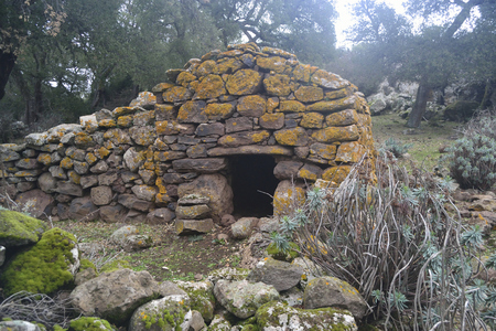Ancient animal refuge in the Giara
