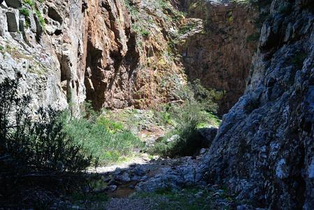 Canyon of Bidda mores