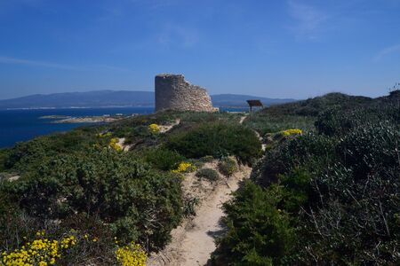 Tower of Capo Mannu Imagens