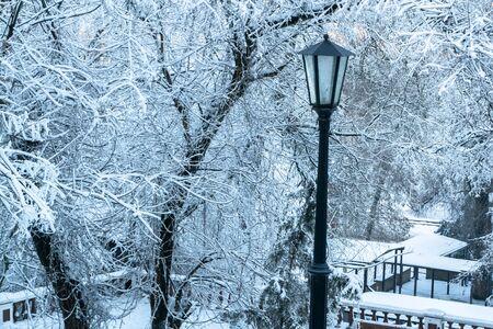 beautiful street lamp in snowy winter. Vintage street lamp in the snowy woods. lonely vintage lantern