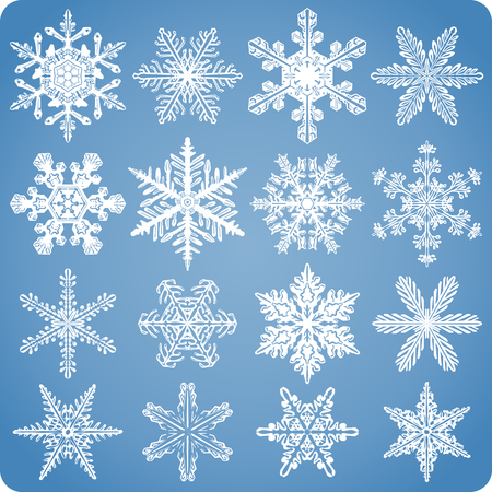 Set of intricate, realistic, natural-looking snowflakes Vector