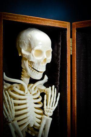 Holloween human skeleton in closet.  Stock Photo