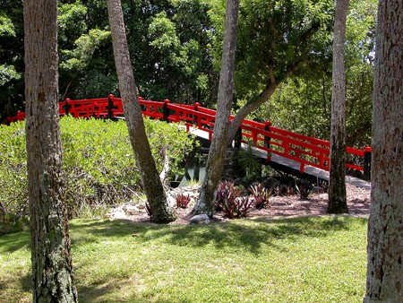 Oriental red wooden bridge and pine trees in garden setting Stock Photo - 4543246