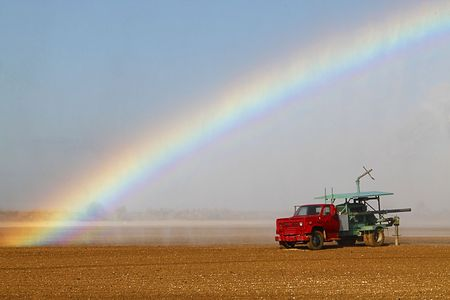 sprinkling: Colorful rainbow caused by the water spray during the irrigation of farmland