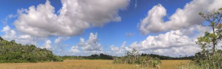 Everglades Panorama with clouds forming over the landscape Фото со стока