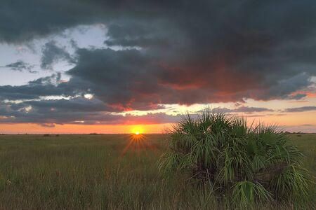 Beautiful sunset in a remote part of the Florida Everglades photo