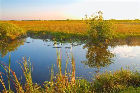 Een vroege ochtend plaats van een blauwe kanaal de Florida Everglades Landschap