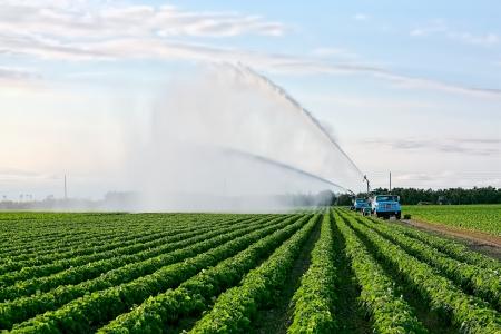 Öntözés mezőgazdasági területek minőségének biztosítása érdekében a termés