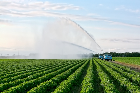 Irrigation of farmland to ensure the quality of the crop Stock Photo