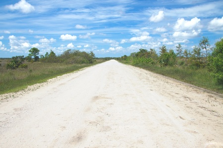 Beautiful scene of a dirt road in the Big Cypress National Preserve just north of the Everglades National Park in South Florida photo