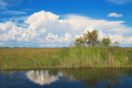 View of the Shark River Slough adjacent to the Tamiami Trail with typical summer clouds. A slough is slow moving body of water. The Shark River slough flows from Lake Okeechobee to the Florida Bay and is the main slough of the Everglades National Park