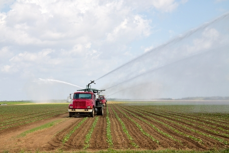 Irrigation of farmland to ensure the quality of the crop Фото со стока