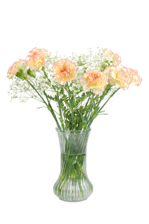 Beautiful bouquet of carnations, the flower of love, isolated on white