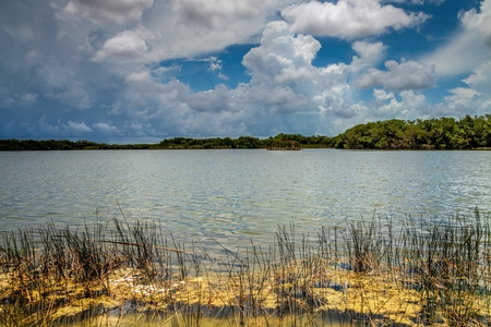 One of the many lakes in the Florida Everglades with beautiful cloud formations in the Florida Everglades Landscape during the wet season summer months