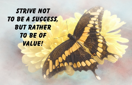 Inspirational quote about life, and spirituality with a beautiful Giant Swallowtail  Butterfly  on a textured background