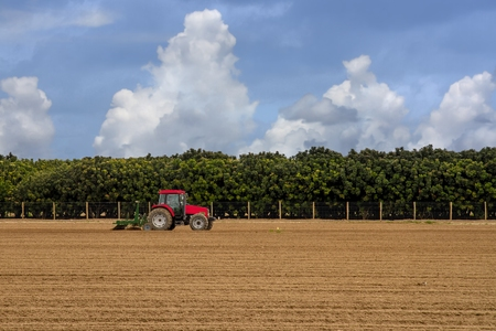 seeding: A lone tractor is plowing a field in preparation for seeding