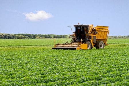 Harvester het oogst verzamelen voor het seizoen