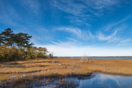 Overview of the Bogue Sound coastal area on the Pure knoll shores of Emerald island between the outer banks and the mainland of North Carolina Фото со стока - 99503788