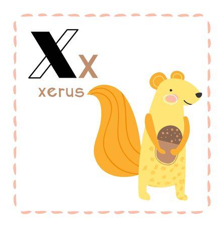 Cartoon Alphabet letter X for Xerus for education