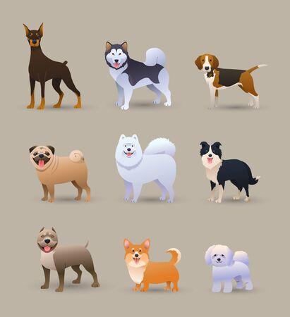 Set of nine different dog breeds