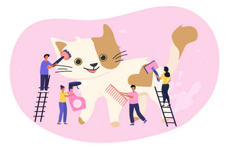 Cat grooming and pet care concept