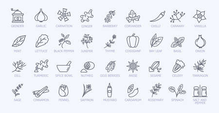 Very large set of black and white spice icons