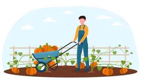 Farmer with metal wheelbarrow harvesting pumpkins Illusztráció