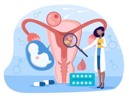 Female doctor makes uterus examination Vecteurs