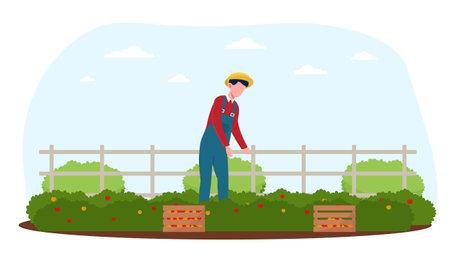 Male farmer harvesting fruits in the garden Ilustração