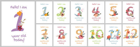 Baby Milestone Cards Illustration