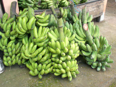 bunches: many bunches of banana fruit on market