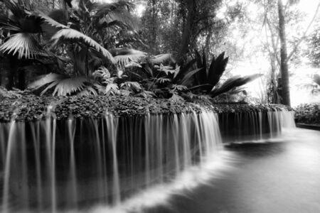 botanic: waterfall at botanic gardens Stock Photo