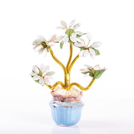jade plant: jade plant in flowerpot