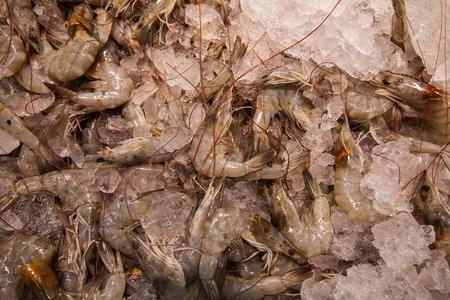 decapod: Raw Shrimp on ice.