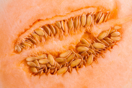 pulp: Fresh organic cantaloupe melon slices ,showing pulp and seeds.