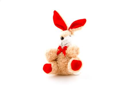 cuddle: Rabbit doll on white background.