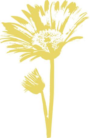 daisy vector: Gerber Daisy