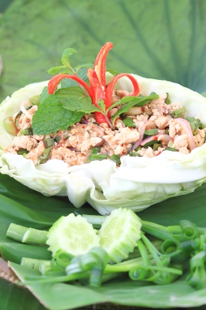 Larb Chicken Stock Photo - 8750336