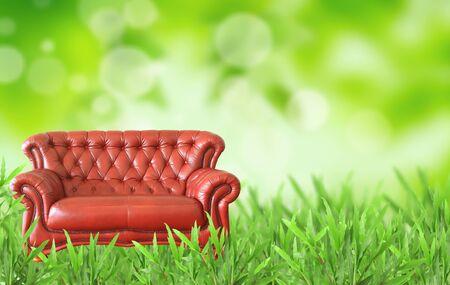blue leather sofa: divano rosso sul campo di erba Archivio Fotografico