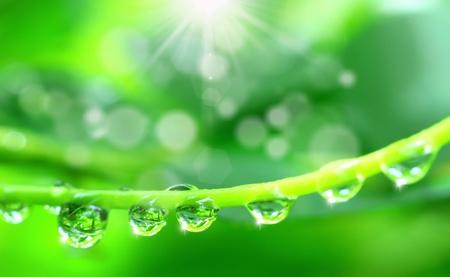 water drop shine in sun light Stock Photo - 9440375