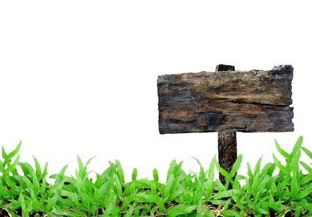grass frame on white background Stock Photo - 9440361