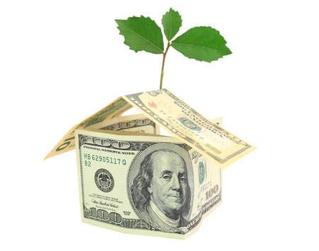 Money and plant isolated on white background Stock Photo - 9602292