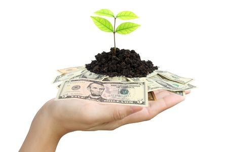 Saving money concept Stock Photo - 9606217