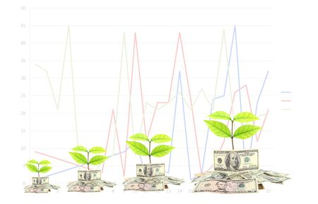 dollar money and busines with graphs. photo