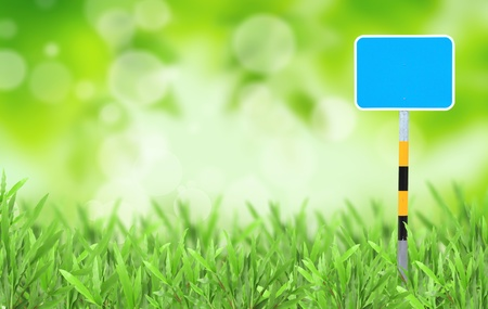 Natural green blurred background Stock Photo - 9650008