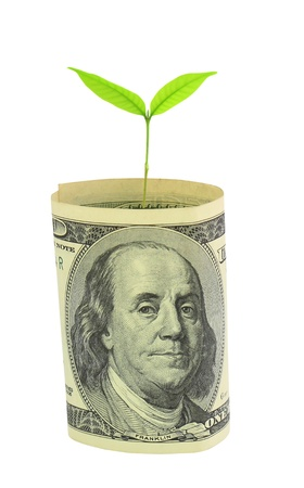 gastos: Tree growing from dollar bill