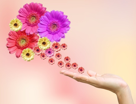 Woman's hand with flowers Stock Photo - 9904992