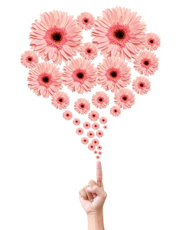 Woman's hand with flowers Stock Photo - 9904983