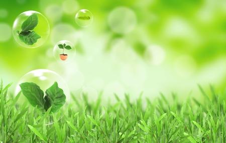 sustentabilidad: Abstractos burbujas contra el s�mbolo de la protecci�n del medio ambiente